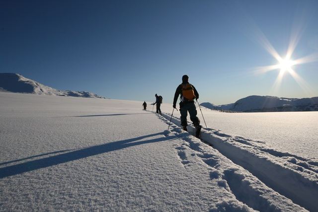 On our back country skiing course, you learn by doing and will be inspired to undertake your own trips.